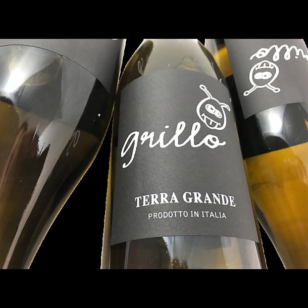 Terra Grande Grillo 2016